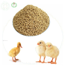 Lysine Feed Additives Poultry Food