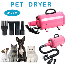 Pengering Pet Dog Cat Pet Perawatan Portabel 2400w
