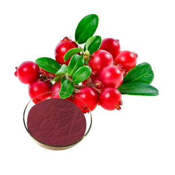 Longze Cranberry Juice Powder