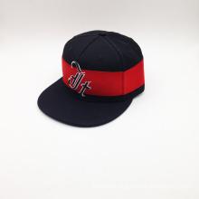Unisex Embroidery Cotton Fashion Snapback Cap (ACEW205)