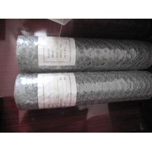 Elektro-verzinkte Sechskant-Maschendraht im besten Preis