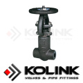 Forged Steel Gate Valve, Various Type