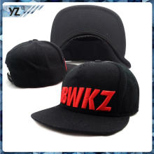New design 3D embroidery Snapback classics Snapback with great price