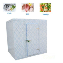 Deep Freezer for Meat, Fish and Seafood