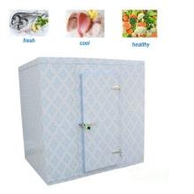 Sala fria para vegetais / frutas / peixe / sala de armazenamento a frio