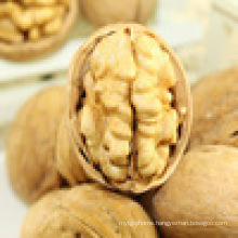 EU standard walnut kernel