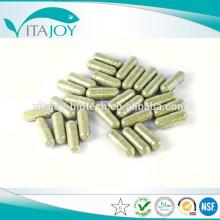 Capsule de poudre de racine Marshmallow de haute qualité OEM