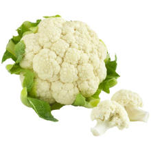 China exporters market prices High Quality No Frozen White Healthy Cauliflower With Gap