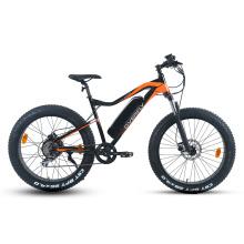 XY-Warrior-W Electric mountain bike with hub motor