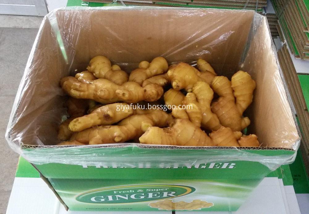 Fresh ginger (9)