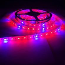 Plant Grow leuchtet Full Spectrum LED Strip