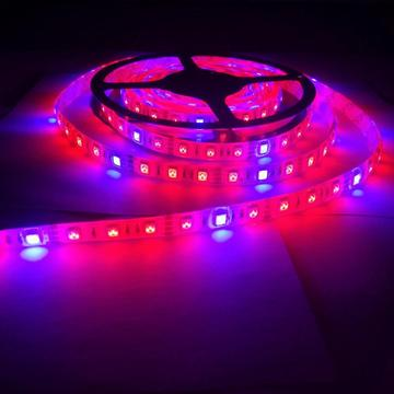 Plantas de cultivo de luces Full Spectrum LED Strip
