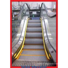 2016 Hot Sale Ascenseur d'escalier intérieur avec 30 degrés