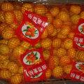 Bonne qualité de mandarine douce douce