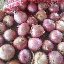 Qualité standard d'exportation de l'oignon rouge frais 5-7cm