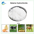 China fornecedores Alibaba Best Sellers Betaine Hcl