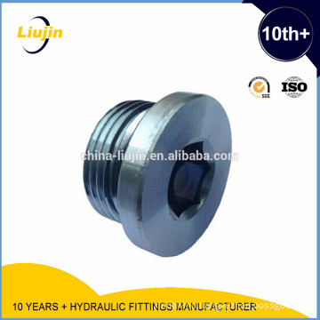 Bsp Male Captive Sealed Hollow Hex Plug (4BN-WD)