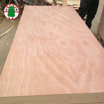 poplar core okoume veneer commercial plywood for furniture