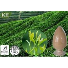 Natural Organic Green Tea Extract Polyphenols 20%- 98%; EGCG 50%-95%