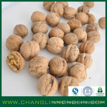 2014 new products alibaba supplier walnuts kernels for sale