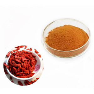 2017 Nuovo Goji Powder Raw Organic