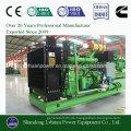 100kW Biomasse Vergasungs Generator Set oder Genset