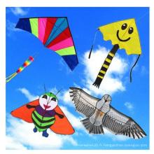 Cerf-volant de vol en nylon populaire coloré promotionnel