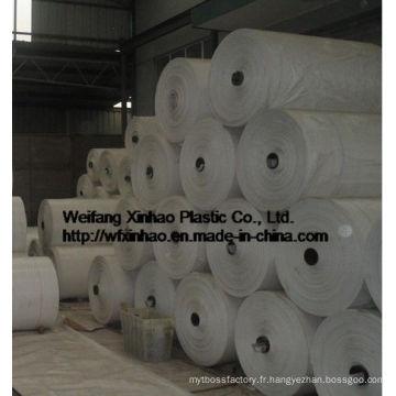 Produits chauds de sac tissé stratifié par pp avec le sac intérieur de PE et la valve 20kg / 50kg pour l'alimentation, le sel, le sucre, la farine ou la ration Sac d'emballage de riz