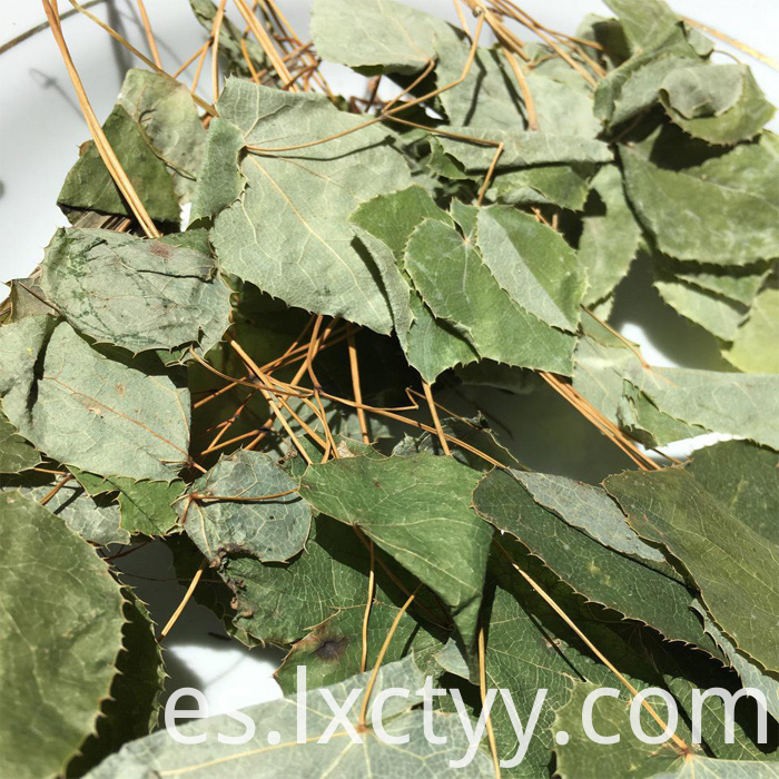 epimedium sagittatum extract tea
