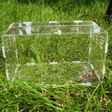 Cage Acryl Haustier Fütterung Box Reptilien Haustier Box
