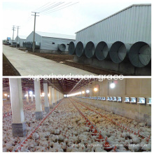 Steel Structure Broiler House Wth modern Production Poultry Equipment
