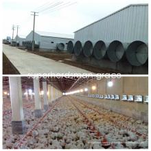 Casa de grelha da construção de aço com equipamento moderno das aves domésticas da produção
