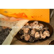 Dried Vegetable Tea Flower Shiitake Mushroom
