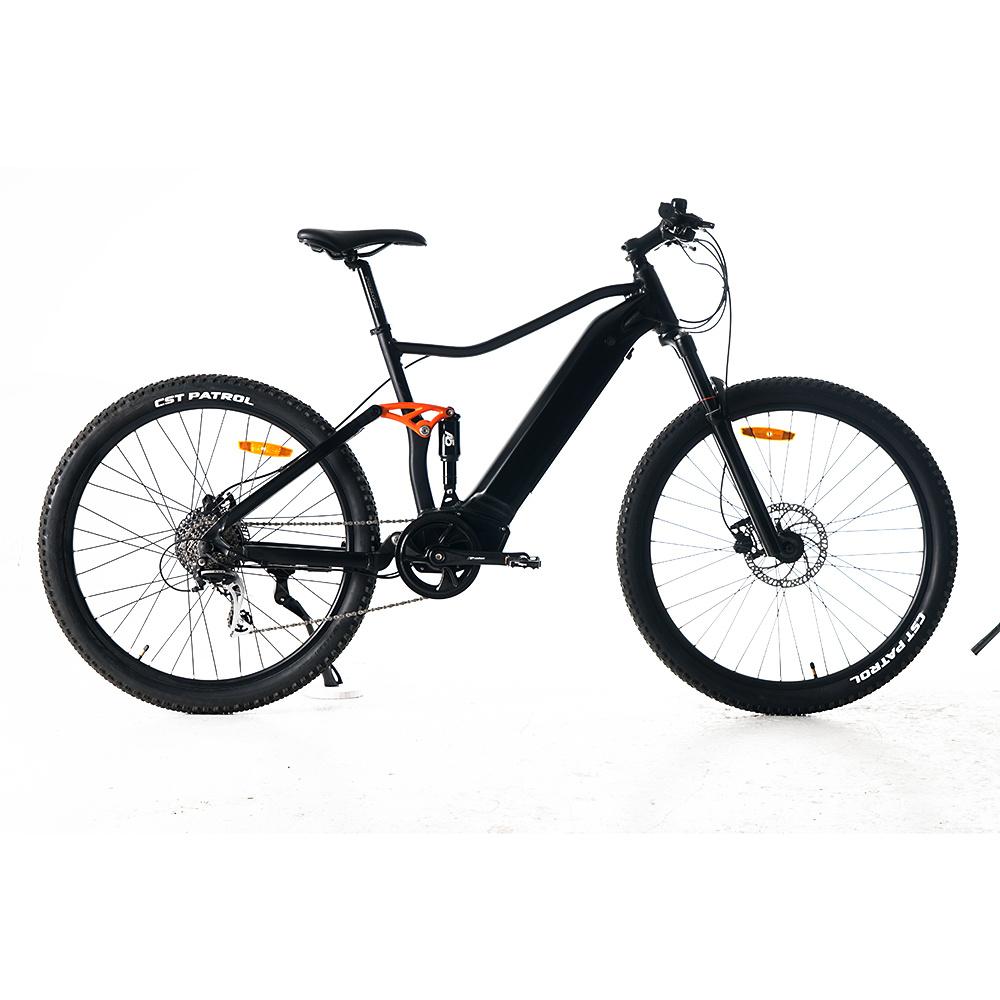 MID motor electric bike