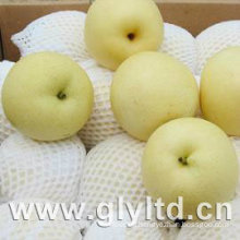Chinese Fresh Pear with Good Quality