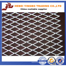 Decorative Expanded Metal Mesh/Door Mesh/Iron Expanded Wire Mesh