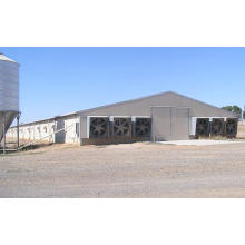 Prefab poultry steel Structure Chicken Shed house