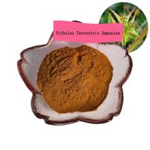 factory supply Tribulus terrestris extract powder/fructus tribuli/tribulus saponins