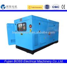 Weifang100KW 60HZ générateur d'énergie sonore à 3 phases à vendre