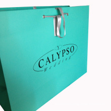 Printed Shopping Paper Bag with Lamination Finishing