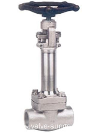 Low Temperature Forged Steel Globe Valve