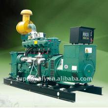 Grupo de generador de gas (8-1000kW) Grupo de generador de gas ng gpg