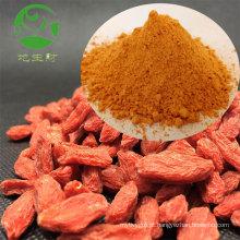 Processamento de fábrica 100% pure goji berry extrato wolfberry pó