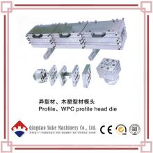 Tubo de plástico / Perfil / Cabeza de tablero Muere con certificación CE e ISO