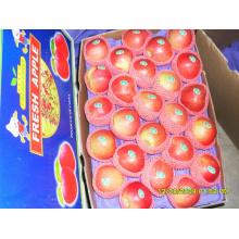 Gala vermelha fresca Apple de qualidade superior
