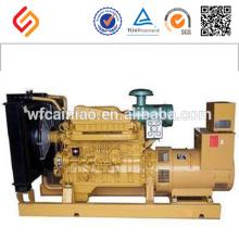 Kleiner elektrischer chinesischer Außenbordmarinedieselgenerator