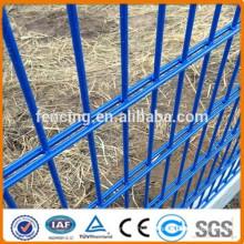 ПВХ покрытием ISO9001 высокого качества Красивые декоративные двойной проволочной сетки забор