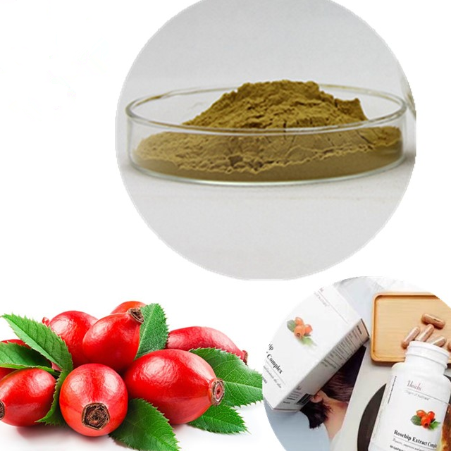 rose hip extract4