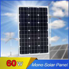 Solarworld Solar Cell Mono Solar Panel-60W en venta