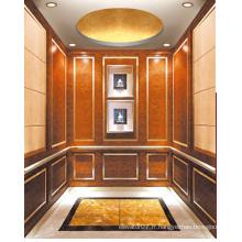 Fjzy-ascenseur (FJ8000-1) ascenseur passager Fjzy-226